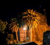 Palm trees in Montenegro at night Stock Photo