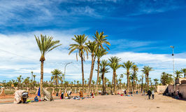 Palm trees near the city walls of Marrakesh, Morocco Stock Image