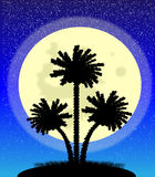 Palm trees at night. Illustration of a silhouette of a palm trees at night Royalty Free Stock Photo