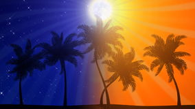 Palm Trees Night / Day (Animated HD Background). HD animation of stylized palm tree silhouettes stock video
