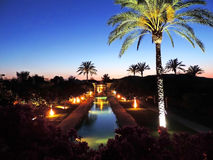 Palm trees by night, hotel or resort Stock Image
