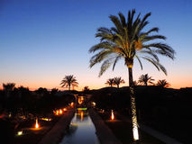 Palm trees by night, hotel or resort Royalty Free Stock Images