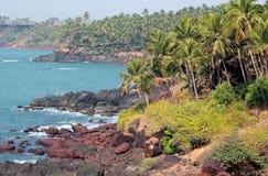 Palm trees on the ocean coast Royalty Free Stock Photo