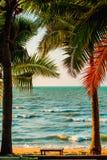 Palm Trees On Sea Stock Photos