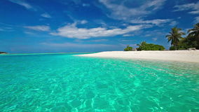 Palm trees over lagoon with white beach in Maldives stock video
