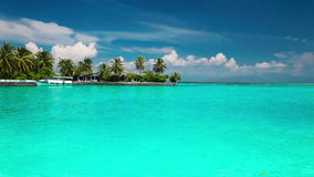 Palm trees over lagoon with white beach in Maldives stock footage