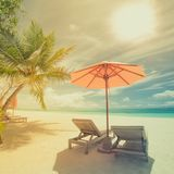 Tropical beach in vintage style effect. Sun umbrella and deck chairs, sun beds and palm trees under sunlight blue sea backgroud stock images
