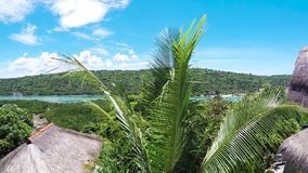 Palm trees over tropical lagoon on Nusa Lembongan island, Bali, Indonesia. Asia. Green spa scene. Slow motion. Panorama. stock footage