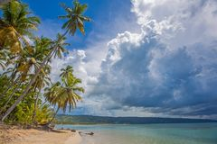Palm trees over tropical lagoon with wild beach Royalty Free Stock Photography