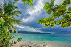 Palm trees over tropical lagoon with wild beach. Amazing landscape in the wil beach Playa Bonita, Las Terrenas, Dominican Republic Stock Images