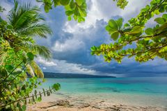 Palm trees over tropical lagoon with wild beach. Amazing landscape in the wil beach Playa Bonita, Las Terrenas, Dominican Republic Royalty Free Stock Images