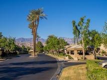 Palm trees, Palm Desert golf resort Stock Photos