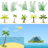 Palm trees, palm leaves, tropics. Tropical island in the ocean. Stock Images