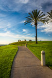 Palm trees and path at Hilltop Park, in Signal Hill. Palm trees and path at Hilltop Park, in Signal Hill, Long Beach, California Royalty Free Stock Photos