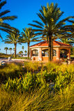Palm trees and pavilion in Clearwater Beach, Florida. Royalty Free Stock Photography