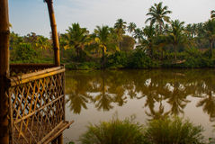 Palm trees and pond. Goa. India Royalty Free Stock Image