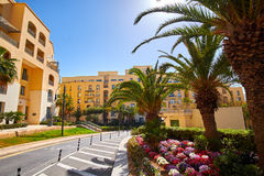 Palm Trees in Portomaso Malta Stock Photo