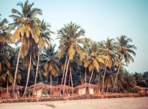 Palm trees and reed huts on a beach at sunset Royalty Free Stock Photo