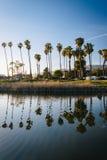 Palm trees reflecting in Mission Creek, in Santa Barbara, Califo Stock Photo