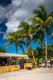 Palm trees and restaurant on the beach in Key West, Florida. Stock Image