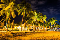 Palm trees and restaurant at night at South Beach, in Key West, Royalty Free Stock Photo