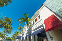 Palm trees in Rodeo Drive Stock Photography