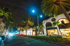 Palm trees in Rodeo Drive Royalty Free Stock Image