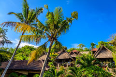Palm trees and roofs bungalows, Nusa Lembongan, Indonesia Stock Photography