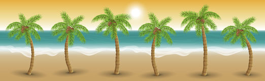 Palm trees in a row on beach in sunset, vector illustration. Palm trees in a row on beach in sunset. Horizontal banner for background or summer design. Sea waves Stock Photography