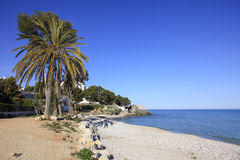 Palm Trees sandy Beach and Mediterranean Sea and town of Altea Spain Royalty Free Stock Photography