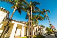 Palm trees in Santa Barbara Stock Image