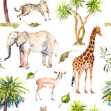 Palm trees and savannah animals - giraffe, elephant, cheetah, antelope. Zoo seamless pattern. Watercolor. Palm trees and savannah animals - giraffe, elephant Royalty Free Stock Images