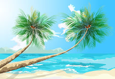 Palm trees scene Royalty Free Stock Images