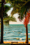 Palm trees on sea. Background Stock Photos