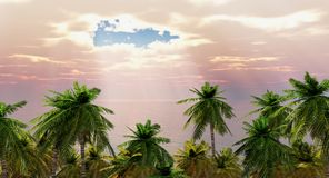 Palm trees at the sea Royalty Free Stock Photo