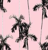Palm trees seamless background Stock Photography