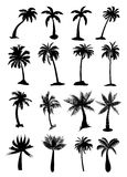 Palm trees set Royalty Free Stock Image