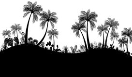 Palm trees silhouette Stock Image