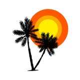 Palm trees silhouette and sun icon in flat style isolated. Palm trees silhouette and sun in flat style isolated on white background. Sunset at Island icon Royalty Free Stock Photography