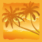 Palm trees. Silhouettes of palm trees on beach vector illustration