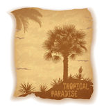 Palm Trees Silhouettes on Old Paper Royalty Free Stock Images