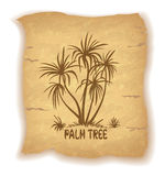 Palm Trees Silhouettes on Old Paper Royalty Free Stock Photography