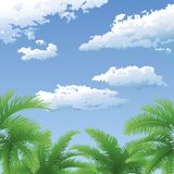 Palm trees and sky with clouds Royalty Free Stock Photo