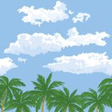 Palm trees and sky with clouds, seamless Stock Image
