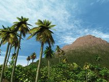 Palm Trees and Small Mountain Royalty Free Stock Photography