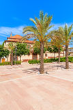 Palm trees on square of historic old town of Silves Royalty Free Stock Images