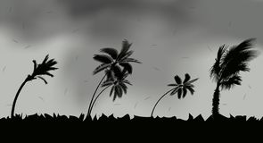 Palm trees during storm and hurricane. Leaves fly across the sky from a storm. Vector Illustration stock illustration