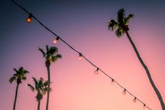 Palm Trees and String Party Lights at Sunset Palm Springs Coachella Valley royalty free stock images