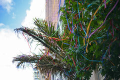 Christmas multicoloured decorated palm tree Stock Images