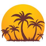Palm Trees And Summer Sunset. Vector illustration of a tropical sunset and palm trees on a small vacation island paradise royalty free illustration